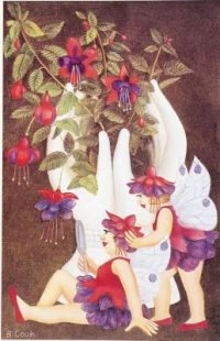 Fuchsia Fairies